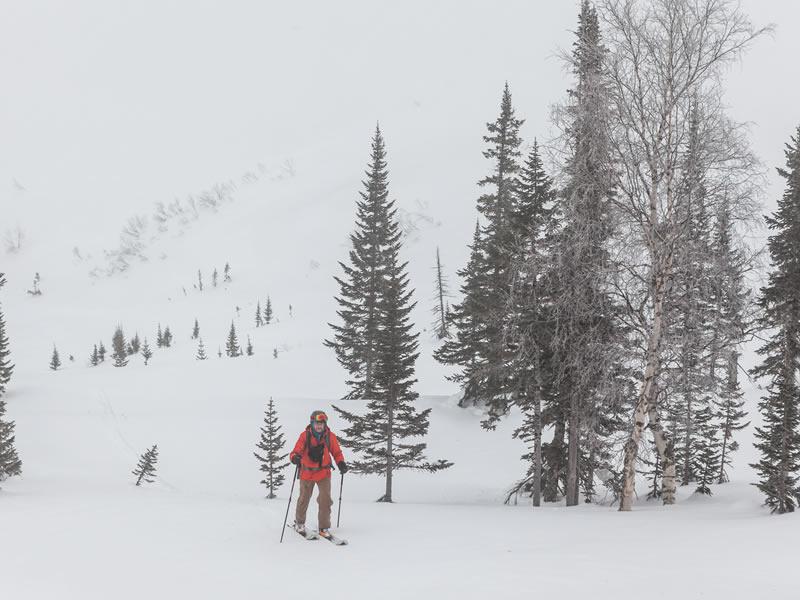 Développement et entretien – sentier de raquettes, ski de haute route, fat bike et chien de traineaux