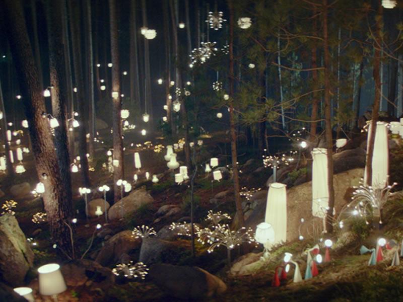 Parcours thématique en forêt