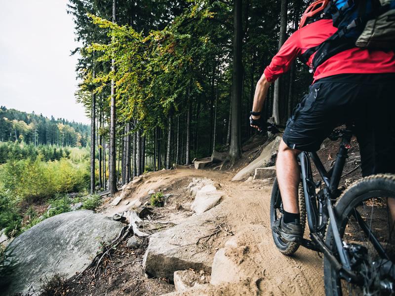 Développement – sentier de vélo de montagne